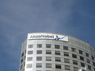 What Made AkzoNobel Such A Success?