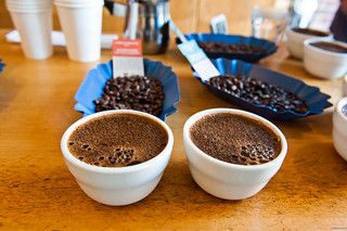 """Climate Change and Coffee: The """"Bean Business"""" in the Midst of a Drought"""